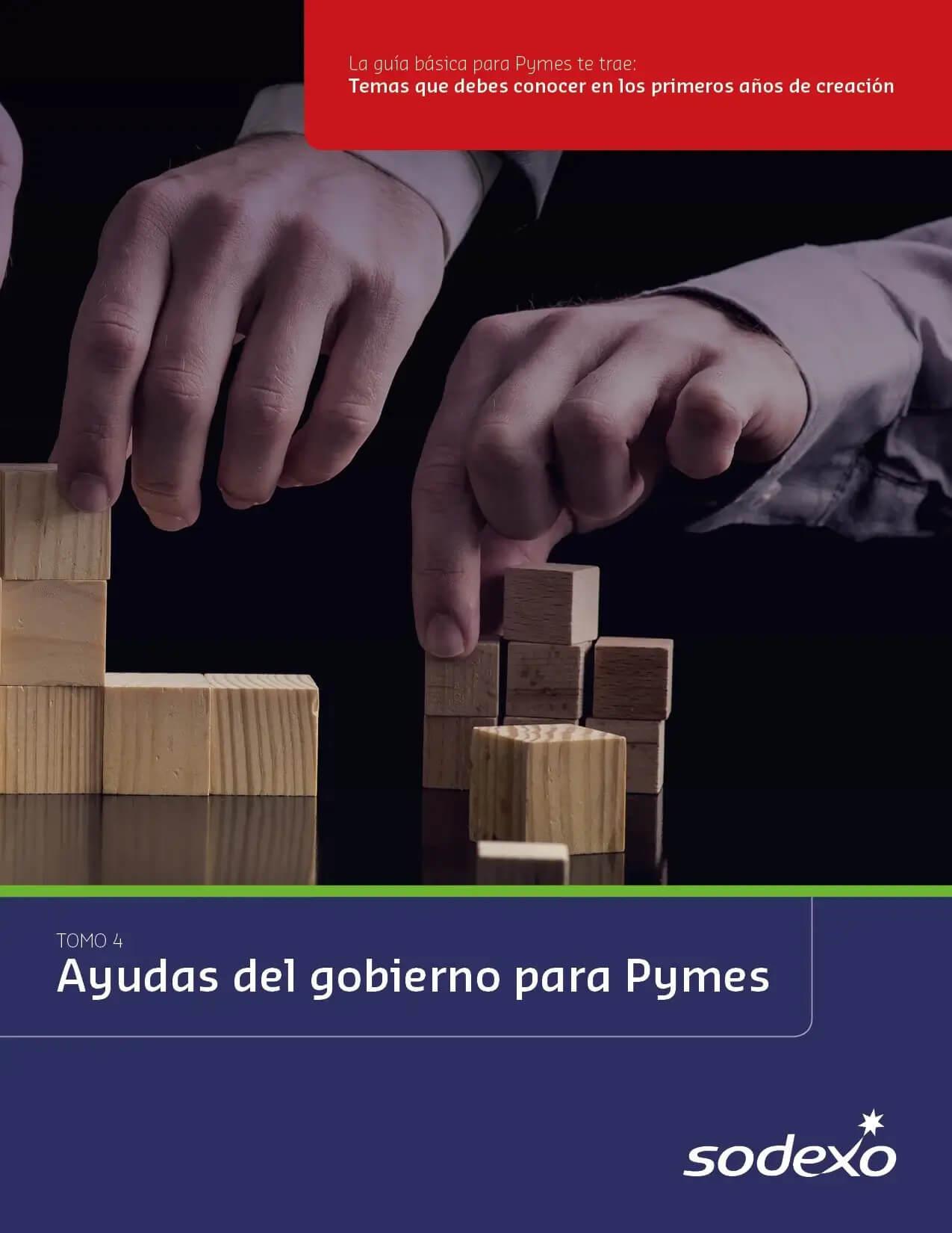 Ayudas el gobierno para Pymes